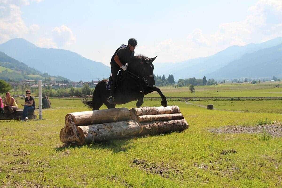 Tiroler und Salzburger Landesmeisterschaft Vielseitigkeit